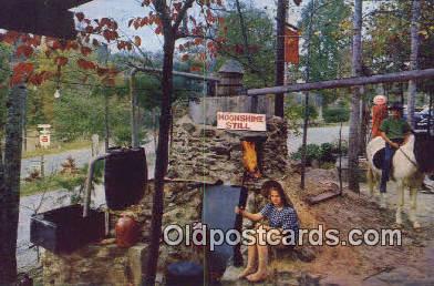 Moonshine Still Bankhead National Forest - Hepsidam, Alabama AL Postcard