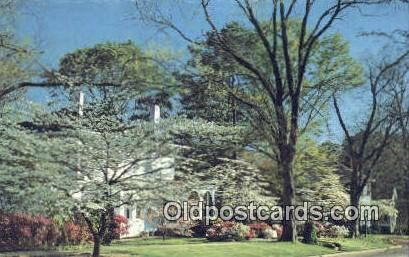 Springtime - Opelika, Alabama AL Postcard