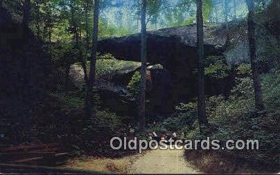 Natural Bridge - Winston County, Alabama AL Postcard