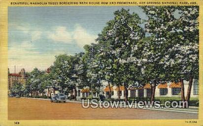 Magnolia Trees, Bath House Row - Hot Springs National Park, Arkansas AR Postcard