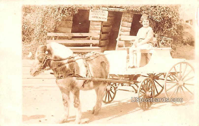 Jane Price on Carriage - Hot Springs, Arkansas AR Postcard