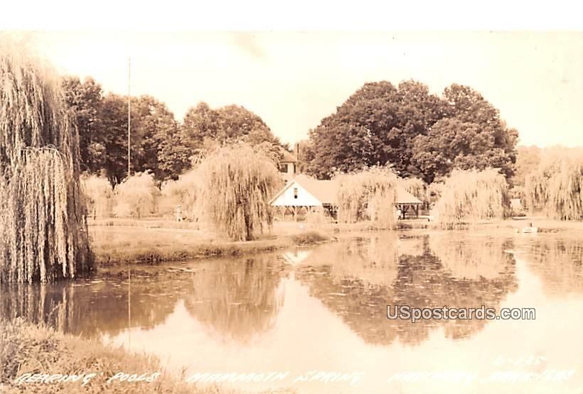 Rearing Pools - Mammoth Spring, Arkansas AR Postcard