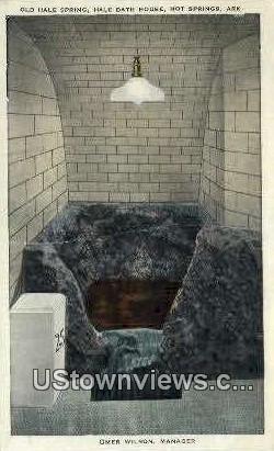 Old Hale Spring, Hale Bath House - Hot Springs, Arkansas AR Postcard