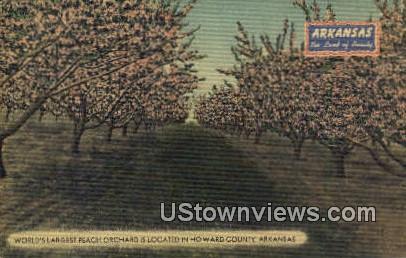 Largest Peach Orchard - Howard County, Arkansas AR Postcard