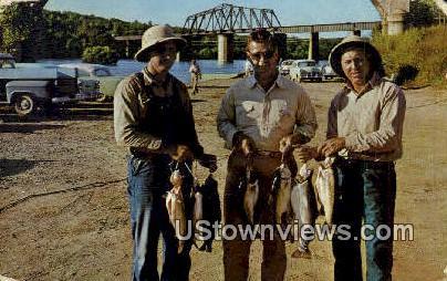 Nice Catch, Rainbow Trout - Ozarks, Arkansas AR Postcard