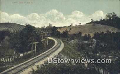 Frisco RR - Cedar Gap, Arkansas AR Postcard
