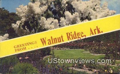 Greetings from - Walnut Ridge, Arkansas AR Postcard