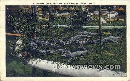 Alligator Farm - Hot Springs National Park, Arkansas AR Postcard