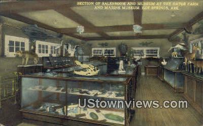 Salesroom, Gator Farm, Marine Museum - Hot Springs, Arkansas AR Postcard