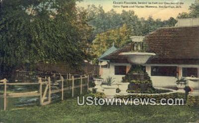 Electric Fountain, Gator Farm - Hot Springs, Arkansas AR Postcard