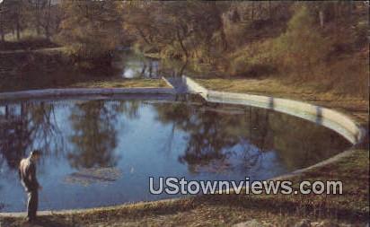 Blue Springs, Ozarks - Eureka Springs, Arkansas AR Postcard