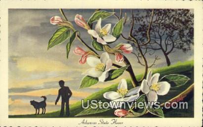 State Flower - Arkansas AR Postcard