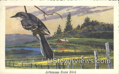 State Bird - Arkansas AR Postcard