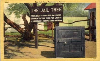 The Jail Tree - Wickenburg, Arizona AZ Postcard