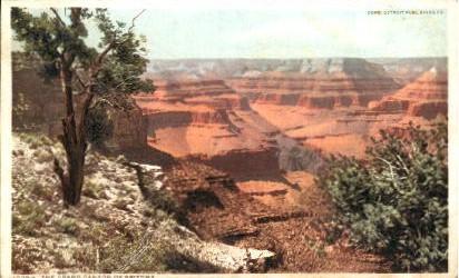 The Grand Canyon - Grand Canyon National Park, Arizona AZ Postcard