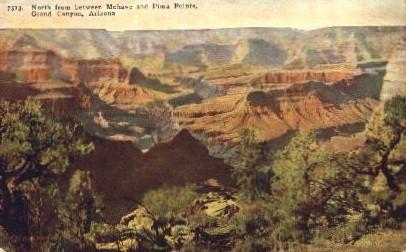 Between Mohave and Pima Point - Grand Canyon National Park, Arizona AZ Postcard