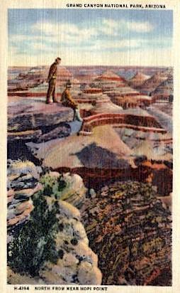 National Park - Grand Canyon National Park, Arizona AZ Postcard