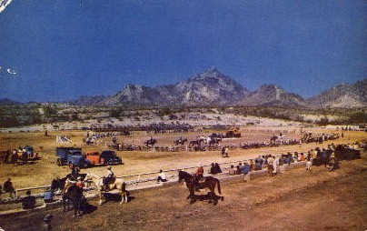 Rodeo Time - Misc, Arizona AZ Postcard