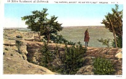 The Natural Bridge - Petrified Forest, Arizona AZ Postcard