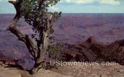 Yavapai & Yaki Points - Grand Canyon National Park, Arizona AZ Postcard