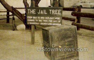 Jail Tree - Wickenburg, Arizona AZ Postcard