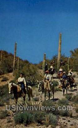 Wickenburg Dudes - Arizona AZ Postcard