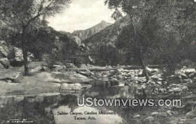 Sabino Canyon - Tucson, Arizona AZ Postcard