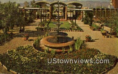 Harlow Nursery - Tucson, Arizona AZ Postcard