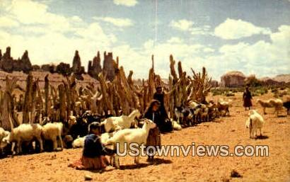 Navajo Sheep Herd - Misc, Arizona AZ Postcard