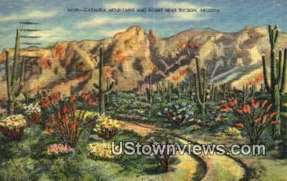 Catalina Mountains - Tucson, Arizona AZ Postcard