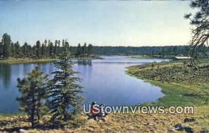 Hawley Lake - Whiteriver, Arizona AZ Postcard