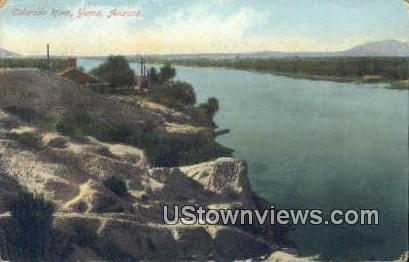 Colorado River - Yuma, Arizona AZ Postcard