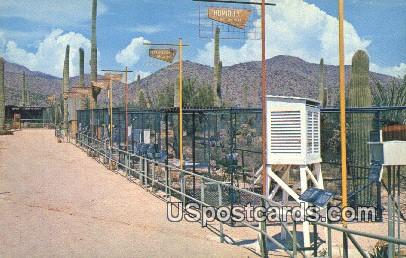 Watershed Exposition - Tucson, Arizona AZ Postcard