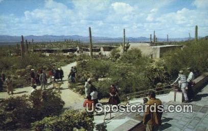 Remada Porch, Sonora Desert Museum - Tucson, Arizona AZ Postcard