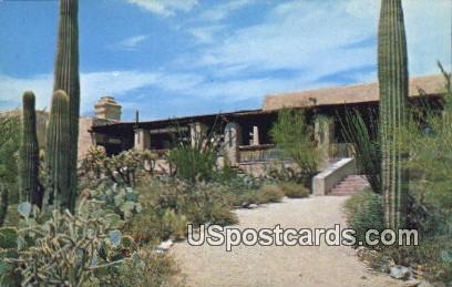 Sonora Desert Museum - Tucson, Arizona AZ Postcard