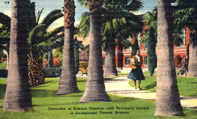 Univbersity of Arizona - Tucson Postcard