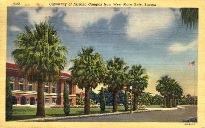 University of Arizona Campus - Tucson Postcard