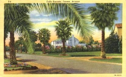 Calle Encanto - Tucson, Arizona AZ Postcard