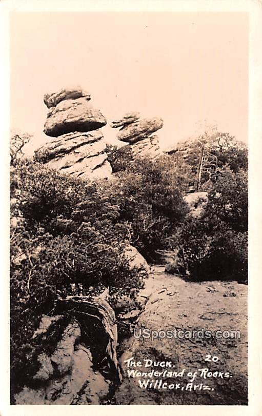 The Duck - Willcox, Arizona AZ Postcard