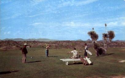 Country Club   - Wickenburg, Arizona AZ Postcard