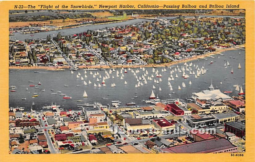 Flight of the Snowbirds - Balboa, California CA Postcard
