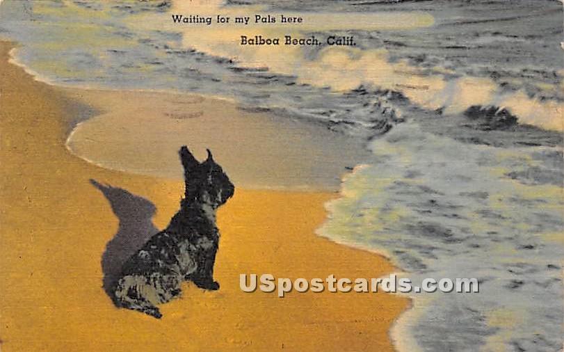 Balboa Beach, California CA Postcard