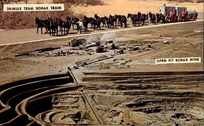 20-Mule Team Borax Train - Boron, California CA Postcard