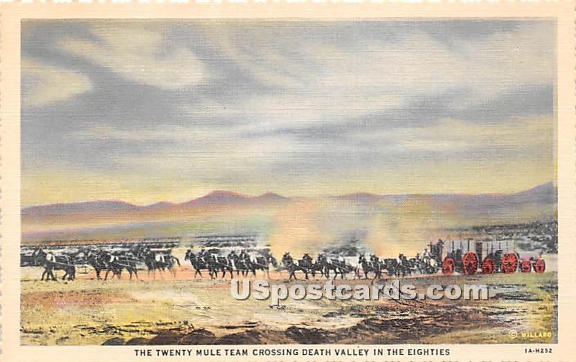 Twenty Mule Team - Death Valley, California CA Postcard