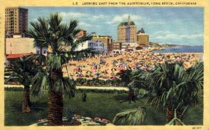 Looking East from the Auditorium - Long Beach, California CA Postcard