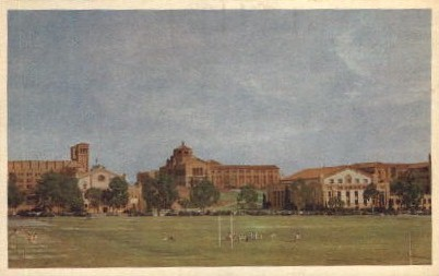 University of California at Los Angeles Postcard