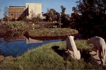 La Brea Tar Pits, Hancock Park - Los Angeles, California CA Postcard