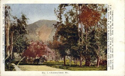 Arrowhead Mountain - Los Angeles, California CA Postcard