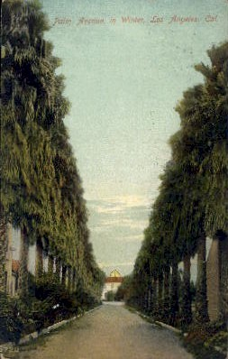 Palm Avenue - Los Angeles, California CA Postcard