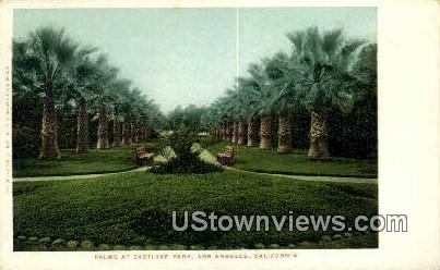 Palms, Eastlake Park - Los Angeles, California CA Postcard